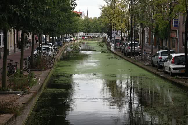 Delft channel - free stock photo