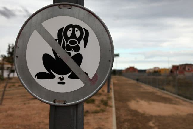 Dog poop sign - free stock photo