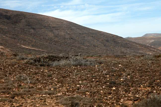Lanzarote mountain - free stock photo